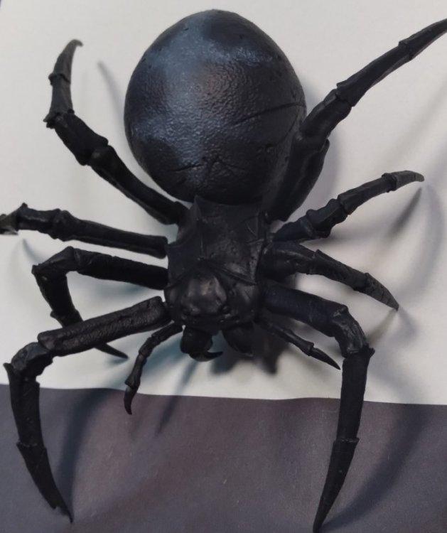 Spider.thumb.jpg.45775bc4493ebce285036db4e8127fe1.jpg
