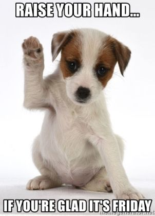 raise-your-hand-if-youre-glad-its-friday.jpg.5712c0785fe1c05dbb27061311f39a16.jpg